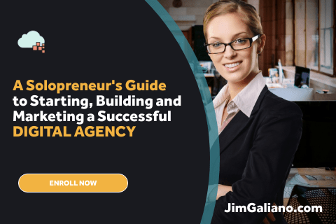 Solopreneur-s-Guide-to-Digital-Agencies-480x320
